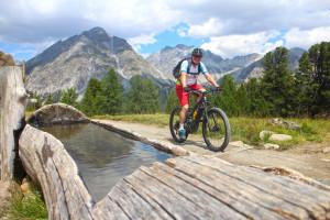 bei_e-bike_alpenuenerquerung_auf_leichten_wegen_zum_costainas_pass