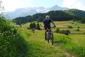 mountainbiker_faehrt_wiesentrail_nach_nauders_bei_alpencross